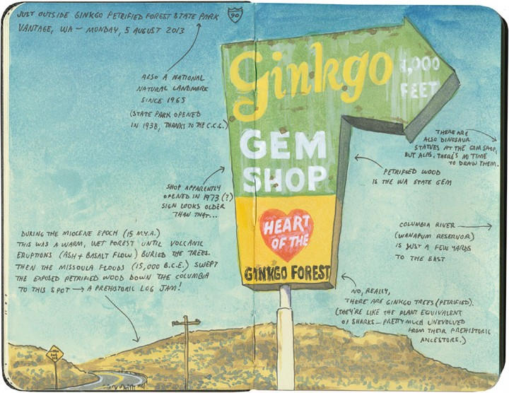 Ginkgo Gem Shop sign sketch by Chandler O'Leary