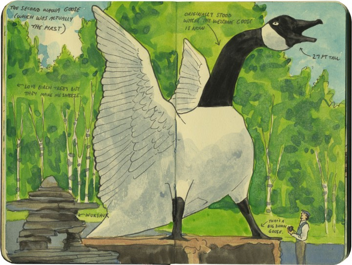 Wawa Goose sketch by Chandler O'Leary