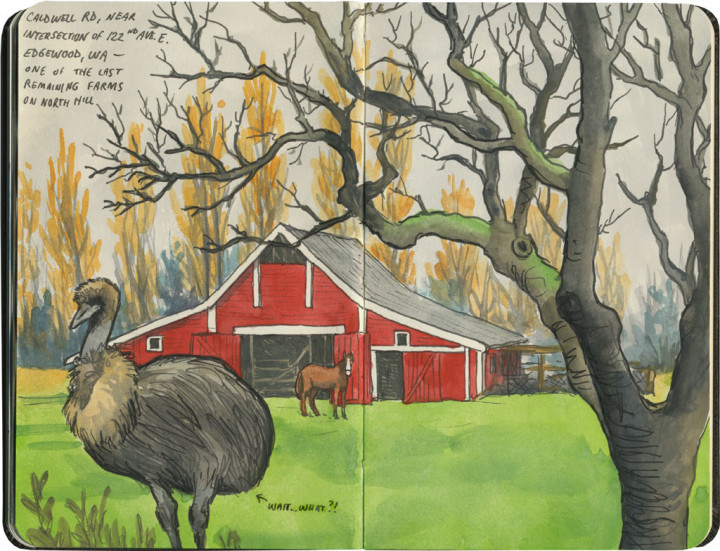 Farm sketch by Chandler O'Leary