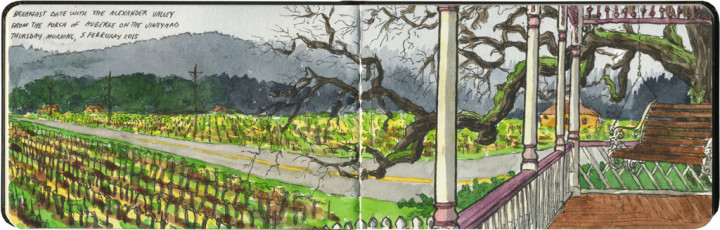Alexander Valley sketch by Chandler O'Leary