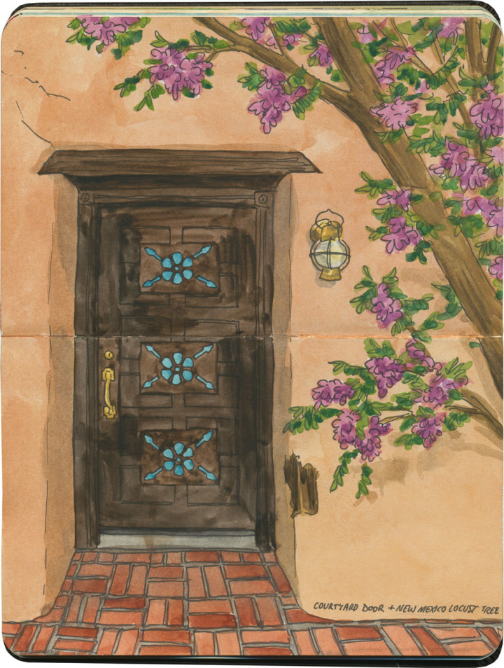 Albuquerque door sketch by Chandler O'Leary