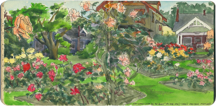 Ladd's Addition rose garden sketch by Chandler O'Leary