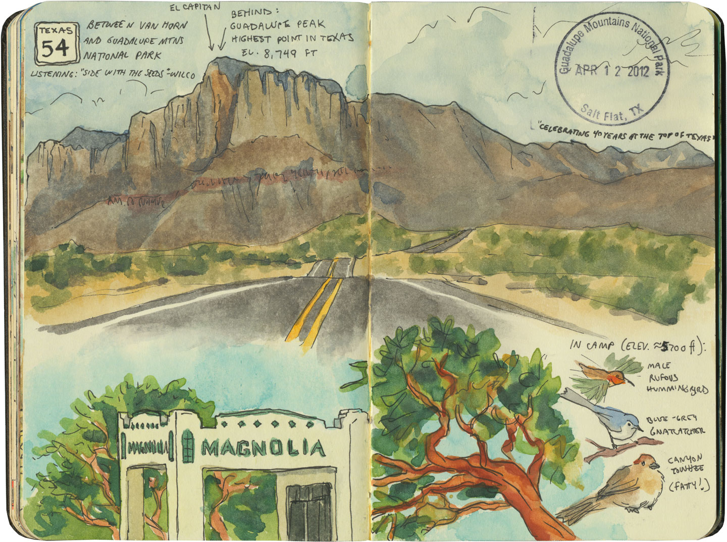 Guadalupe Mountains National Park sketch by Chandler O'Leary
