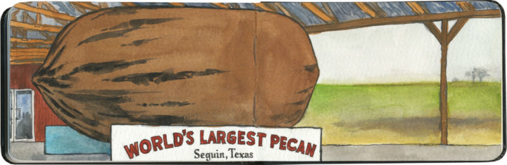 World's largest pecan sketch by Chandler O'Leary