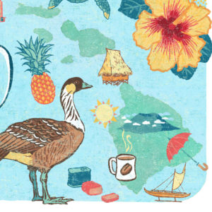 Detail of Hawaii illustration by Chandler O'Leary