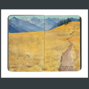 Olympic National Park sketchbook print by Chandler O'Leary