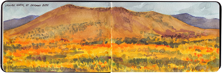 Antelope Valley Poppy Preserve sketch by Chandler O'Leary